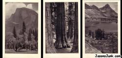 Yosemite100